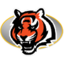 64x64px size png icon of Bengals