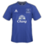 64x64px size png icon of Everton Home