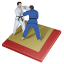 64x64px size png icon of judo