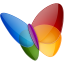 64x64px size png icon of Papillon MSN