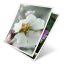 64x64px size png icon of photos