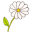 64x64px size png icon of Osd flower