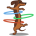 72x72px size png icon of dog hulahoop