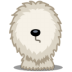 72x72px size png icon of dog shepherd
