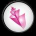 72x72px size png icon of Adobe Bridge CS 2