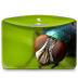 72x72px size png icon of Folder Nature Insect