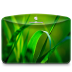 72x72px size png icon of Folder Nature Leave