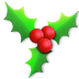 72x72px size png icon of Holly light