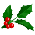 72x72px size png icon of Holly