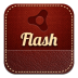 72x72px size png icon of flash