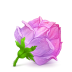 72x72px size png icon of Box 22 Rose Pink