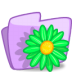 72x72px size png icon of folder flower green