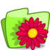 72x72px size png icon of folder flower red