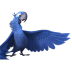 72x72px size png icon of Rio2 Blu 2