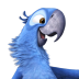 72x72px size png icon of Rio2 Blu