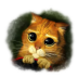72x72px size png icon of Puss 3