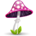 72x72px size png icon of mushroom pink