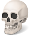 72x72px size png icon of Body Skull
