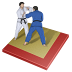 72x72px size png icon of judo