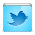 72x72px size png icon of social twitter bird