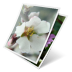 72x72px size png icon of photos