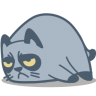 96x96px size png icon of cat grumpy