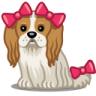 96x96px size png icon of dog bows