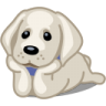 96x96px size png icon of dog labrador