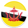 96x96px size png icon of Brunei