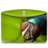 96x96px size png icon of Folder Nature Insect