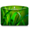 96x96px size png icon of Folder Nature Leave