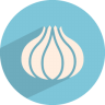 96x96px size png icon of garlic