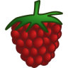 96x96px size png icon of raspberry