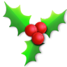 96x96px size png icon of Holly light