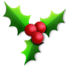96x96px size png icon of Holly