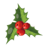 96x96px size png icon of Christmas Mistletoe