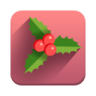 96x96px size png icon of Mistletoe