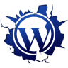 96x96px size png icon of social inside wordpress