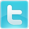 96x96px size png icon of twitter 1