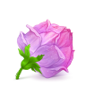 96x96px size png icon of Box 22 Rose Pink