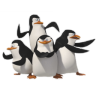 96x96px size png icon of Penguins