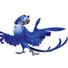 96x96px size png icon of Rio2 Roberto