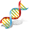 96x96px size png icon of Body DNA