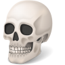 96x96px size png icon of Body Skull