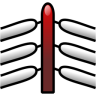 96x96px size png icon of Wrestling