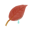 96x96px size png icon of Leaf