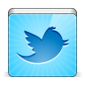96x96px size png icon of social twitter bird