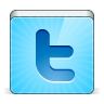96x96px size png icon of social twitter