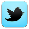 96x96px size png icon of twitter 2