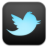 96x96px size png icon of twitter 4
